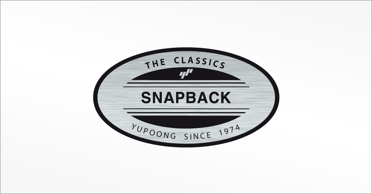 1f661841782e7 THE CLASSICS SNAPBACK CAPS